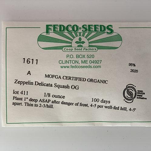 Zeppelin Delicata Squash Seeds