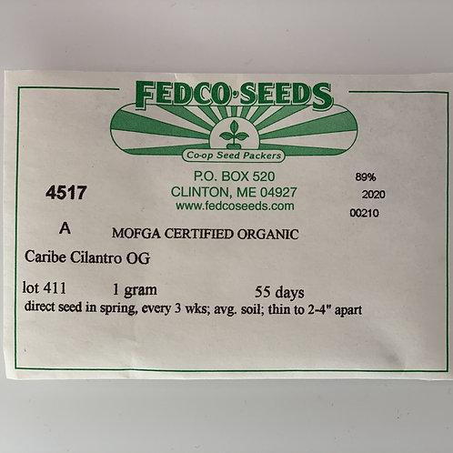 Caribe Cilantro Seeds