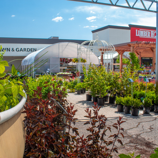 Take your breath away with a touch of fresh landscape, beautiful plants, and flowers! Check out our Landscaping Materials and Seasonal Live Goods Area!