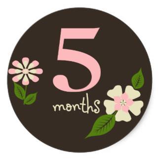 5 mesecev sledim svojim sanjam..
