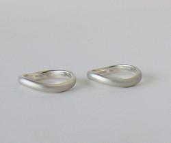 ring101