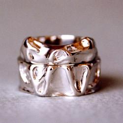 ring14_1