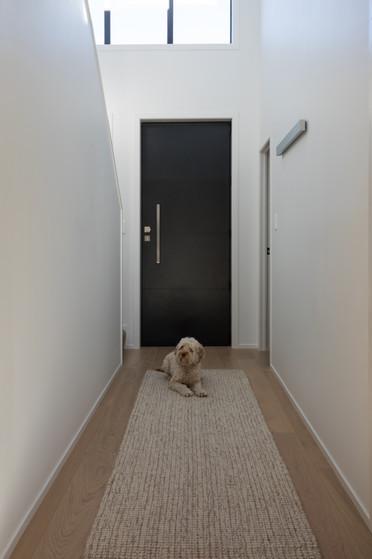 The dog.jpg