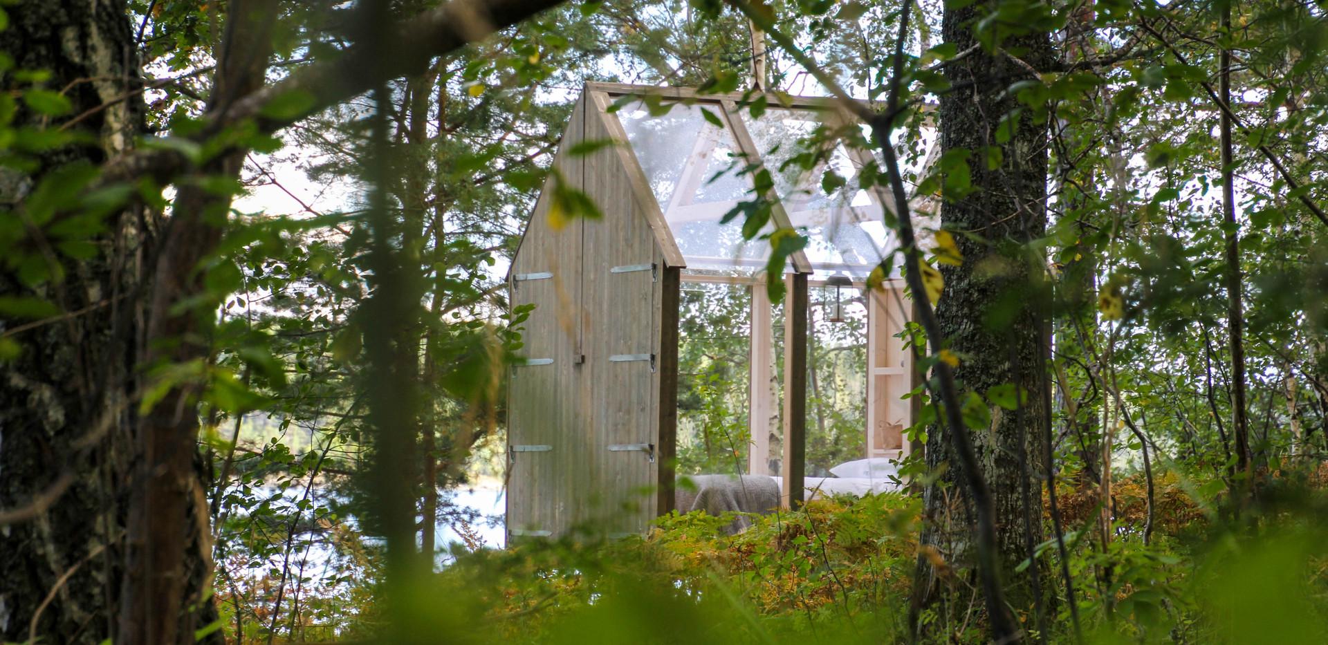 72h Cabin 1 through the trees.jpg