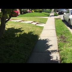 After, lawn cut