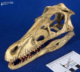Velociraptor_Sculpture_DSC_8201.JPG