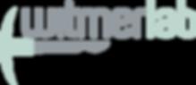 WitmerLab logo_RGB_500.png