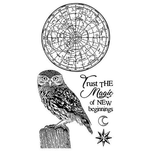 Stamperia - Cosmos - Owl Stamp