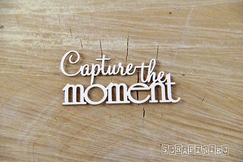 Scrapiniec - Capture The Moment Chipboard