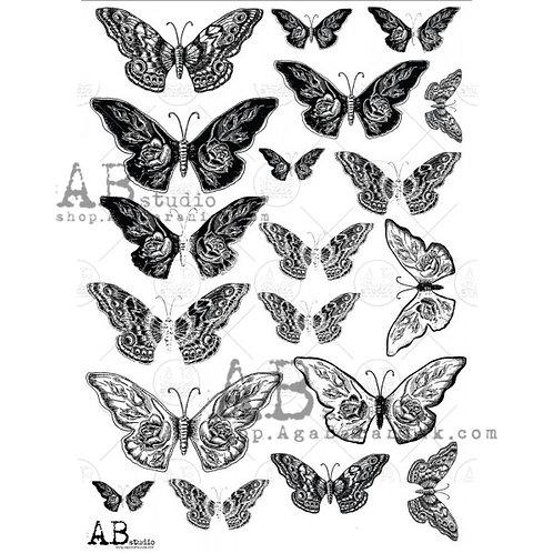 AB Studio - Transparent Foil 0013