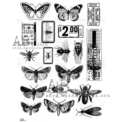 AB Studio - Transparent Foil 0019