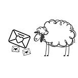 LaValla Sheep #followbasilthesheep (10).