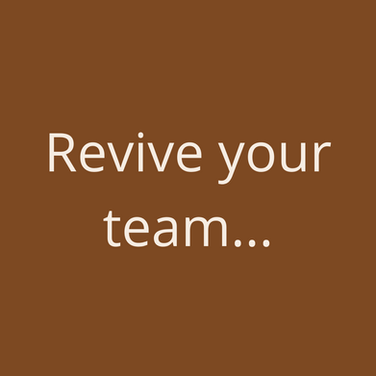 LaValla Revive your Team