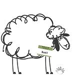 LaValla sheep #followbasilthesheep (3).p