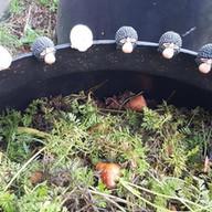 LaValla Compost