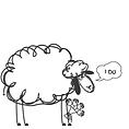 LaValla sheep #followbasilthesheep (2).p