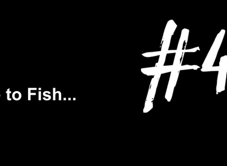 To Dive Headfirst into the Weekend | Excuse to Fish #45
