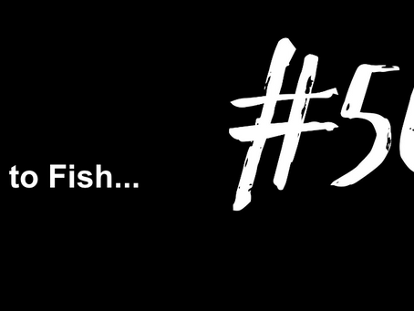 To Look Forward to Something Again | Excuse to Fish #569