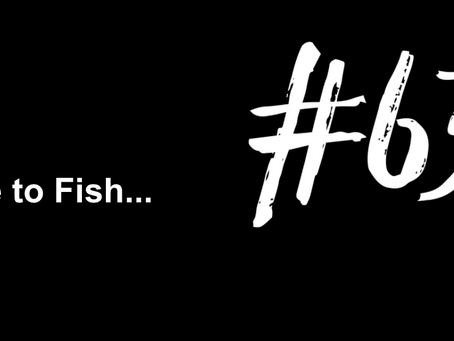 To Have a Plan for Everything | Excuse to Fish #632