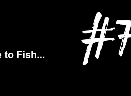 To Feel The Sun On Your Face | Excuse to Fish #76
