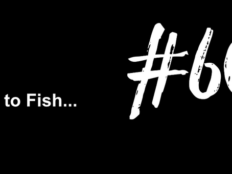 To Peel Yourself Off of the Couch | Excuse to Fish #602