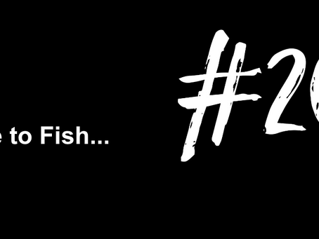 To Cultivate an Eternal Bond with a Fish | Excuse to Fish #206