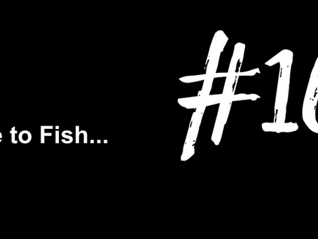 To Focus on Focusing | Excuse to Fish #166