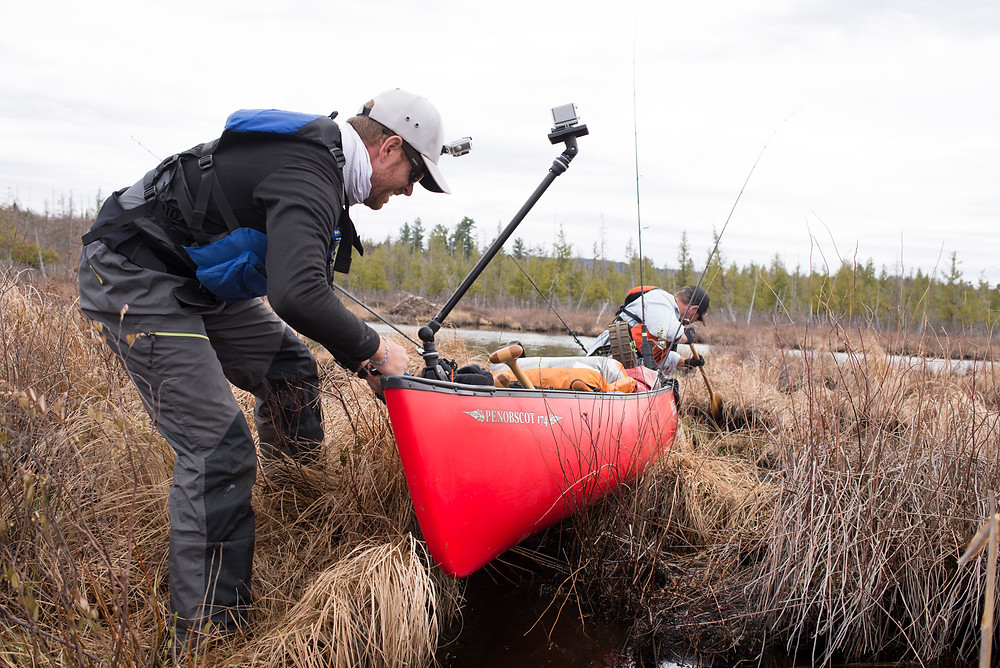 Robert Field drags a canoe over marsh grass in the Adirondacks.
