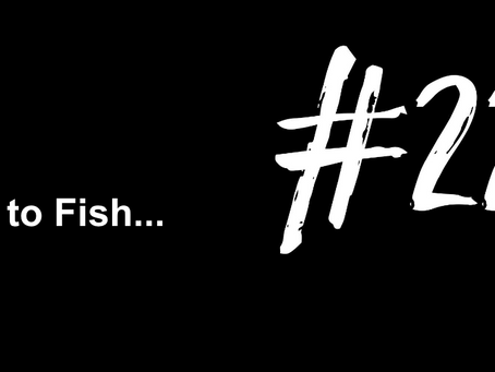 To Feel Ahead of the Curve | Excuse to Fish #221