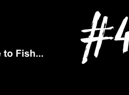 To Develop an Everlasting Calm | Excuse to Fish #41