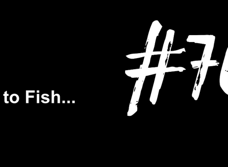 To Make An Absolute Fool of Yourself  | Excuse to Fish #763
