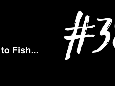 Get the Team Back Together | Excuse to Fish #382