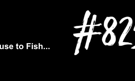 To Run Off and Join the Circus | Excuse to Fish #825