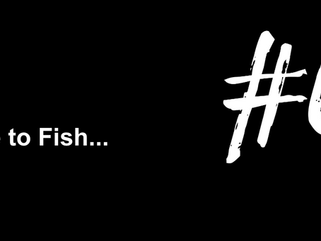 To Start with a Disclaimer | Excuse to Fish #6
