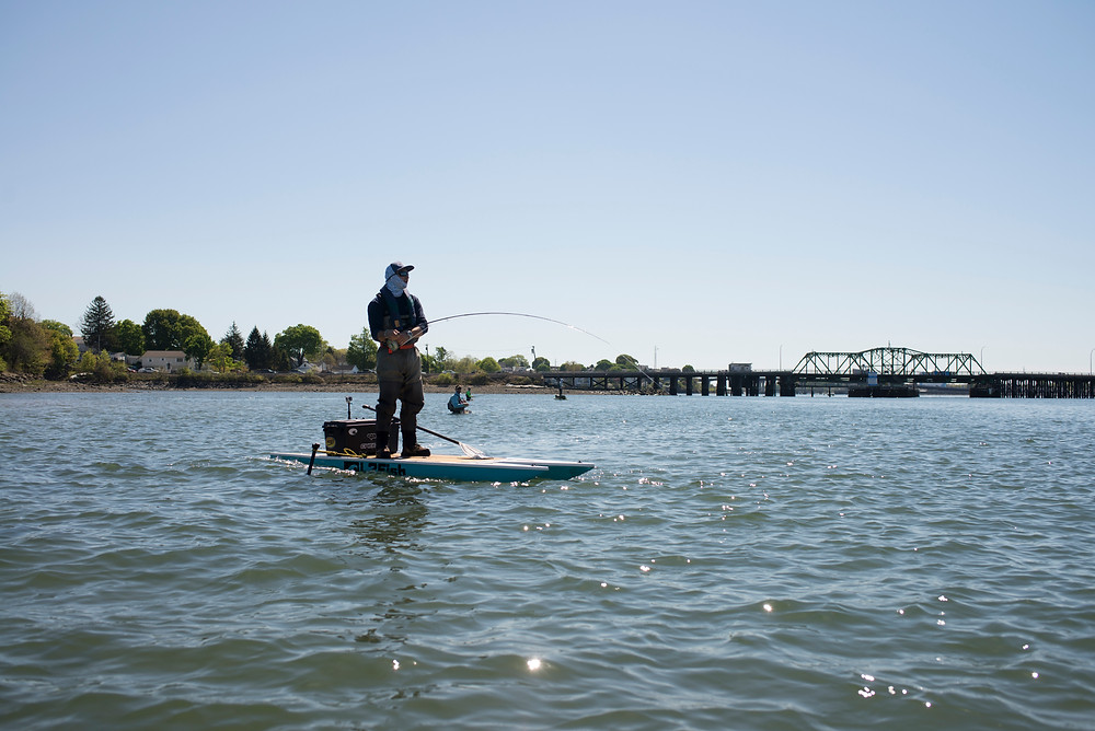 Learn to land fish from your kayak or standup paddleboard.