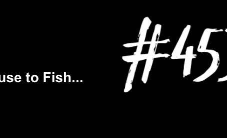 To Get Lost in it All | Excuse to Fish #453