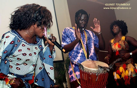 Profesionelle afrikanische Trommlern un Tänzerinen