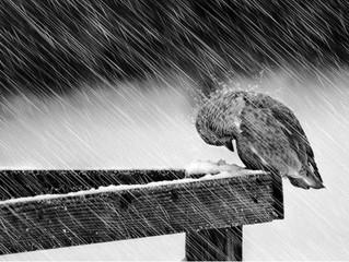 Quando na tempestade, confie em Deus!