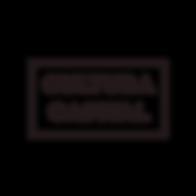 Logotipo y variantes-01.png