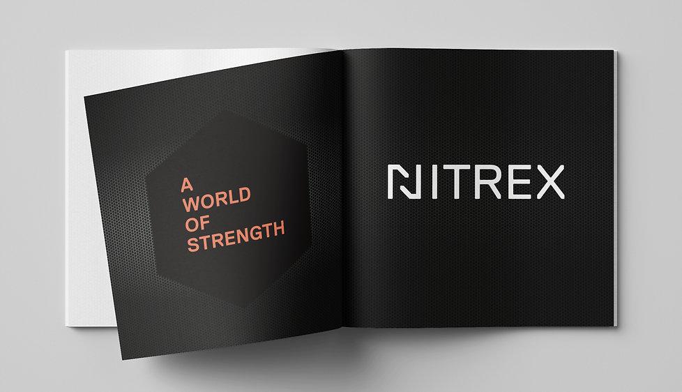 2-Nitrex_Brand Book_02.jpg