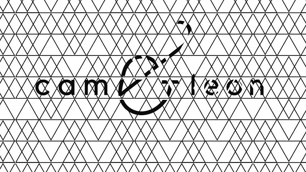 Cam&Leon_Motif_05.jpg