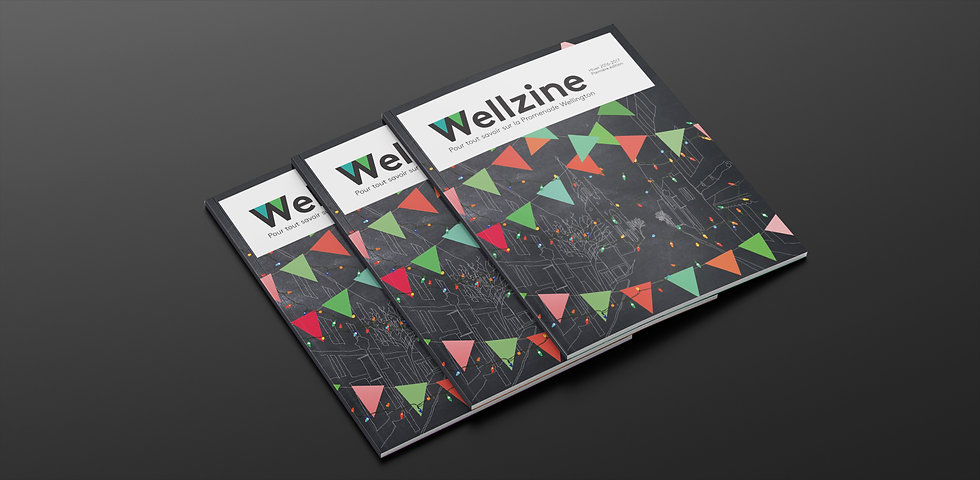Wellington_Magasine_01.jpg