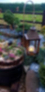 customer photo seed heads.jpg
