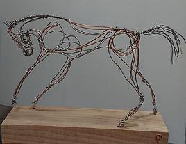 cropped stallion.jpg