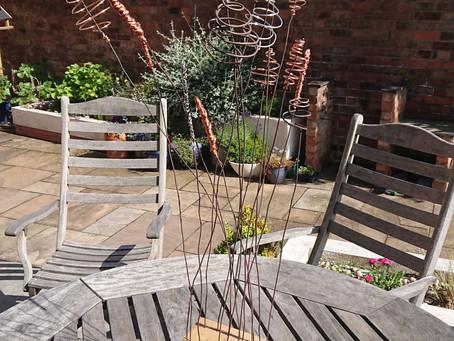 Instant impact in your garden!