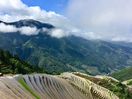Amazing view of Longji Rice Terrace after the shower