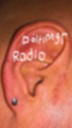 Dólfinngr_Radio_logo.jpg