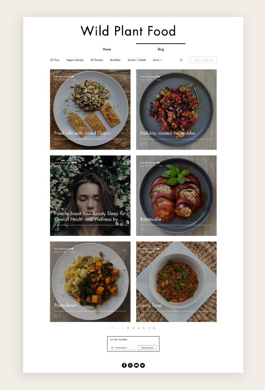 types of blogs: food blogs example from Wild Plant Food