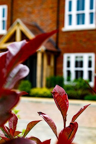 Mistletoe_Lodge7.jpg