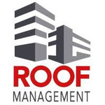 roof%203.jpg